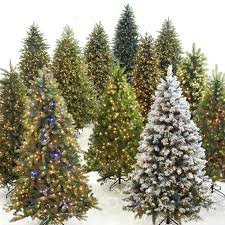home depot and lowes point setters black friday sale 78 best stress less holiday tips images on pinterest christmas