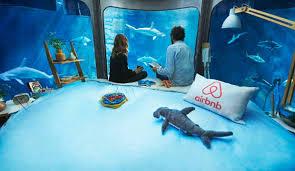 chambre aquarium fait gagner une nuit dans un aquarium avec 35 requins