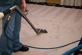 what is the best professional carpet cleaner to carpet vidalondon
