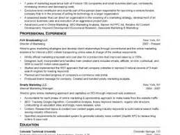 Us It Recruiter Resume Sample Insurance Clerk Resume Sample Resume Medical Recruiter Resume