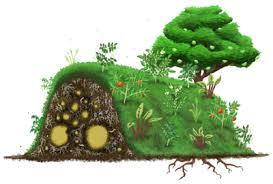 Raised Beds For Gardening Hugelkultur The Ultimate Raised Garden Beds
