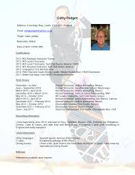 Resume It Skills Referee In Resume Resume For Your Job Application