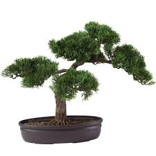 Best Places To Buy Home Decor Cedar Bonsai 16in Silk House Plant And The Best Place To Buy Home