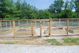 vegetable garden fencing dirt simple