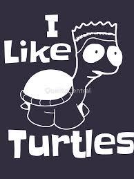 I Like Turtles Meme - i like turtles meme shirt funny animal shirt classic t shirt by