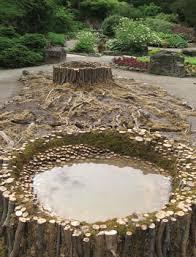 74 best grow water garden images on pinterest garden ideas