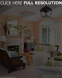 Colors For Living Room Walls by Appealing Living Room Color Combinations For Walls With Living