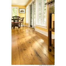 growth eastern white pine from carlisle wide plank floors