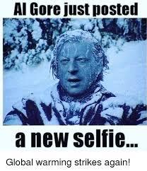 Global Warming Meme - al gore just posted a new selfie global warming strikes again