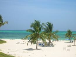 10 best grand bahama island vacation rentals apartments with