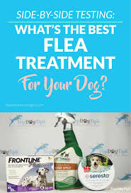 3 best flea and tick treatment for dogs review u0026 testing 2017
