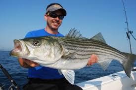 Cape Cod Kids Fishing - deep sea fishing cape cod cape cod fishing charter cape cod
