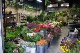San Francisco Flower Garden by A Next Generation Gardener Bay Area Visit 2014 San Francisco
