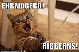 Ermahgerd Meme - lolcats ermahgerd lol at funny cat memes funny cat pictures