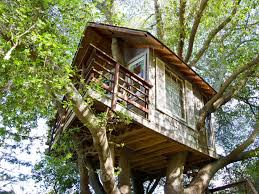 Real Treehouse Airbnb Treehouses For Rent Business Insider