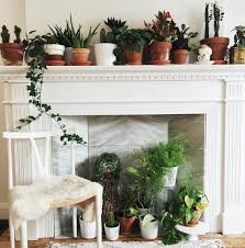 Bedroom Plants The Best Kind Of Fireplace Plant Decor Inspiration Pallets