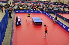 Table Tennis Tournament by Butterfly Arnold Exceptional Venue Tournament Organization
