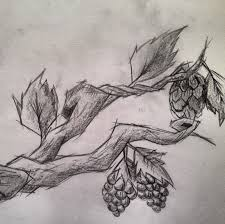 grape and hop vine tattoo sketch by c gray on deviantart