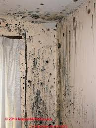 What Causes Mould In Bathrooms Mold Contamination On Building Surfaces Photos Of Mold On U003e 100