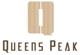 queens peak new launch dundee road district 03 floor plan