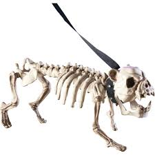 amazon com posable skeleton dog halloween decoration white