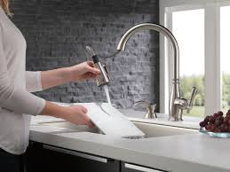 Delta Charmaine Single Handle Pull by 19962 Sssd Dst Single Handle Pull Down Kitchen Faucet With Soap
