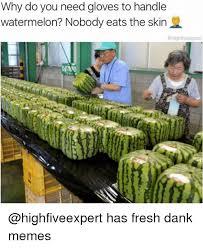 Watermelon Meme - 25 best memes about watermelone watermelone memes