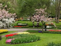 garden flowers images download gundam download pc