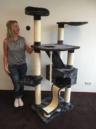 Large Cat Scratching Post Cat Tree For Large Cats Kilimandjaro Antracite Amazon Promo Cat