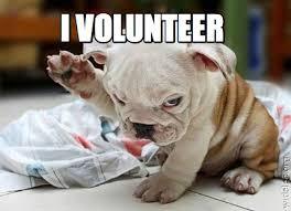 I Volunteer Meme - meme creator i volunteer meme generator at memecreator org