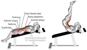Incline Bench Muscle Group Incline Straight Leg And Hip Raise A Compound Exercise Target