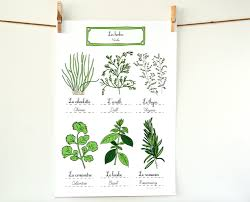 Kitchen Art Ideas by Herbs French Kitchen Art Poster Green Home Decor Botanical