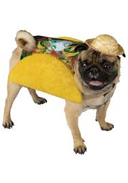 Dog Minion Halloween Costumes Taco Dog Costume