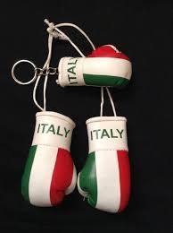 italy italian flag mini boxing gloves boxing