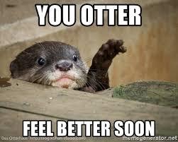 Feel Better Meme - feel better meme 100 images cute feel better meme feel best of
