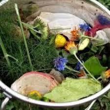 Backyard Composter Backyard Composting Beaverton Or Official Website