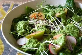 the whole food plant based diet u2014 bloom nutritionist
