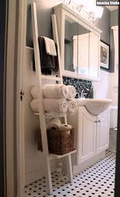 Bathroom Ladder Shelves Diy Ladder Bathroom Shelves