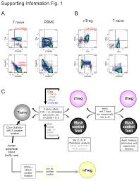 comparative analysis of protocols to induce human cd4 foxp3