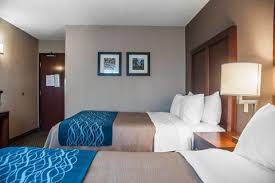 Comfort Inn Buffalo Airport Standardroomsbedroom8 Jpg