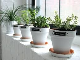 herb garden planter indoor herb garden planters musicyou co