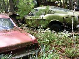 mustang salvage yard secret mustang junkyard found in rhode island forest