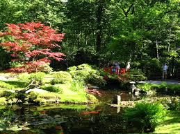 how to build a japanese garden bridge the garden inspirations