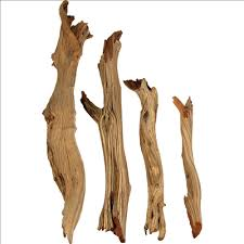 decorative branches mountain driftwood logs and sticks