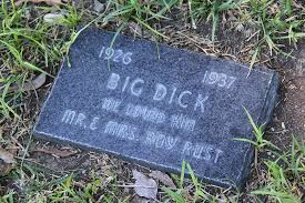 Dog Burial Backyard You Will Live Forever In Our Hearts Photos From A Pet Cemetery Vice