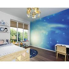 brewster 118 in x 98 in solar system wall mural wals0077 the look at the stars wall mural