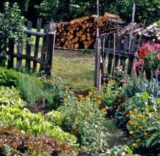 Gartensitzplatz Selber Bauen Einen Cottage Garten Anlegen Pflanzen Für Den Landhausgarten