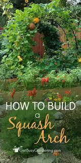 Decorative Vegetable Garden by Best 25 How To Plan A Vegetable Garden Ideas On Pinterest