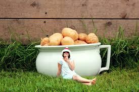 Patio Potato Planters Haxnicks Potato Patio Planters Archives Love To Grow