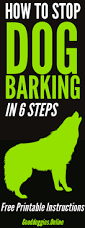 how to train dog to stop barking best 25 dog barking at nothing ideas on pinterest dog barking